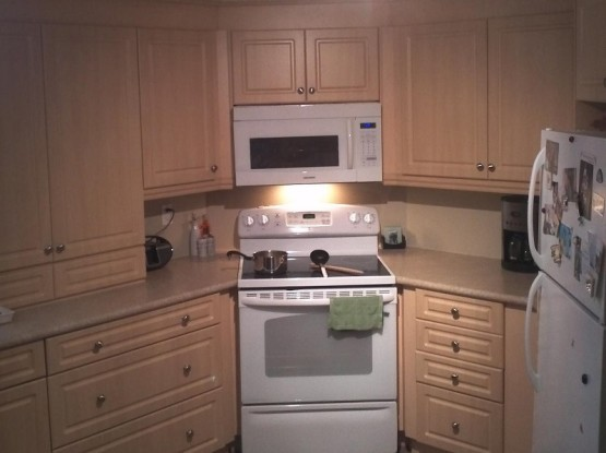 Basement Kitchen Renovation Stove Oven Microwave Fridge Mississauga Contractors By Adept Services Renovation Contractor